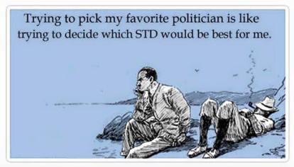 politics 1